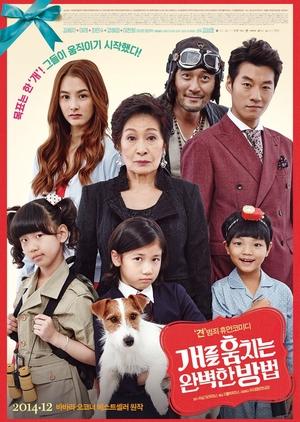 How to Steal a Dog 2014 (South Korea)