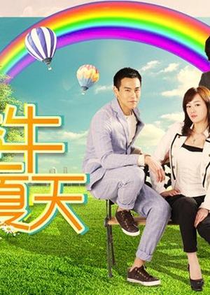 My Sassy Girlfriend 2012 (China)